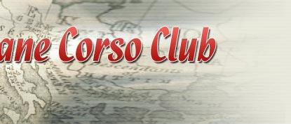 Cane Corso Club - Национальный клуб породы кане корсо